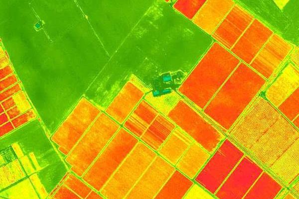 Műholdas NDVI kép